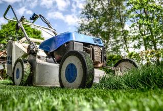 Jak vybrat sekačku na trávu?